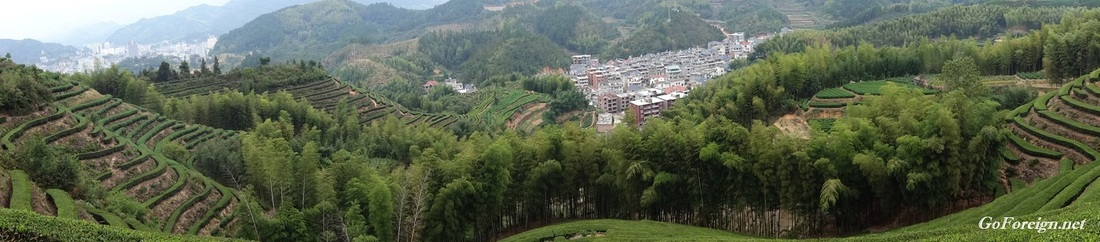 Suichang tea hills